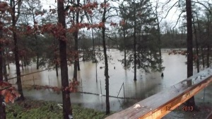 POLK CO. -- Flooding near Acorn, Ark., (Image courtesy Claude Webster )
