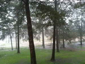 PONDING -- Heavy rain causes ponding in Pope Co. (Image courtesy Phil SIms.)